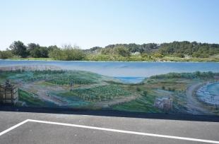landscape-series